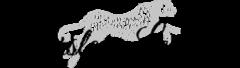 Burslem-Leopard
